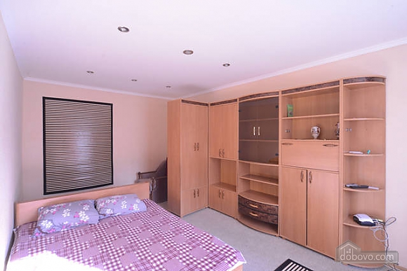 Cozy apartment with conditioner Vynohradar Vitryani Hory, Monolocale (26561), 009