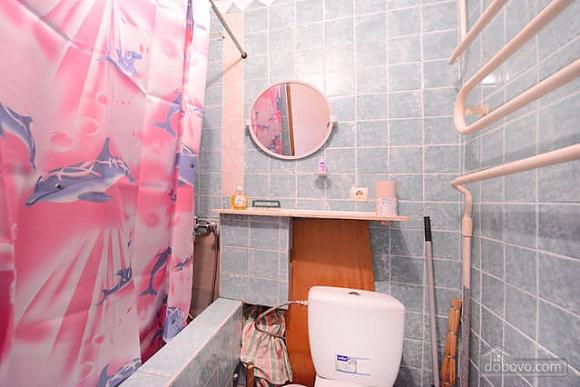 Cozy apartment with conditioner Vynohradar Vitryani Hory, Studio (26561), 017