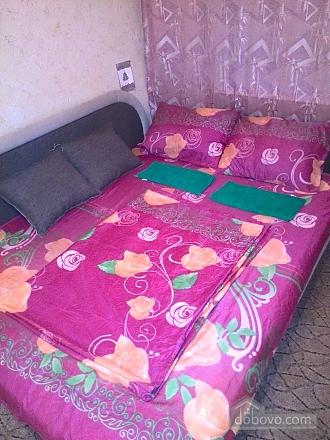Apartment near Ekspoplaza, Studio (44159), 003