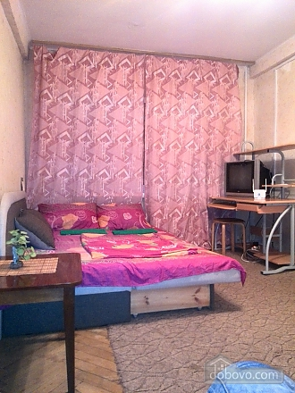 Apartment near Ekspoplaza, Studio (44159), 005