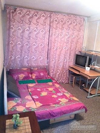 Apartment near Ekspoplaza, Studio (44159), 006