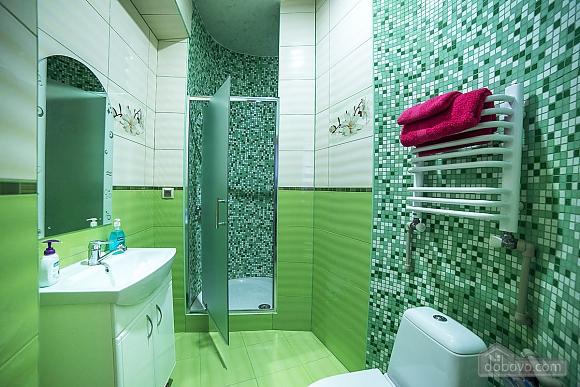 Apartment near Opera theatre, One Bedroom (93772), 017