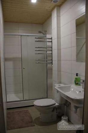 Apartment with Wi-Fi near Plosha Povstannya station, Un chambre (67989), 005