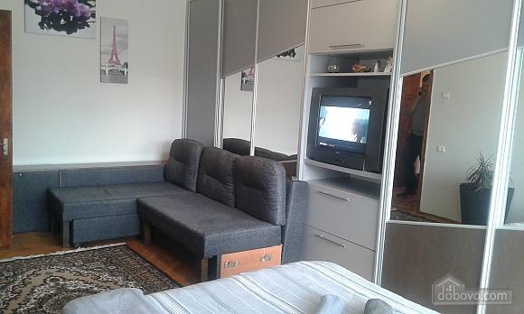 Modern apartment, Una Camera (35167), 001