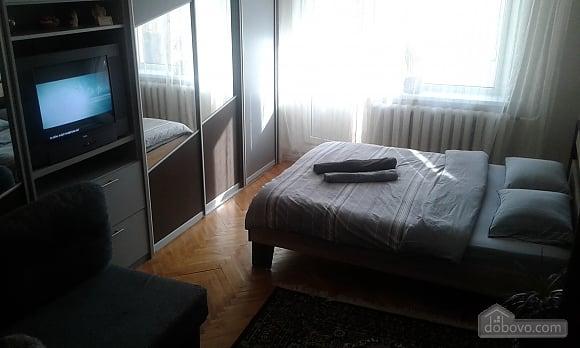 Modern apartment, Una Camera (35167), 002