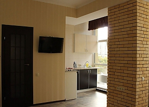 Apartment in Kharkov, Monolocale, 002