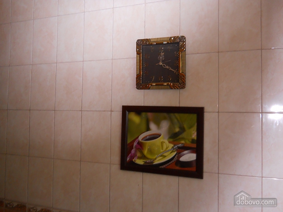 apartment for travelers, One Bedroom (30858), 013