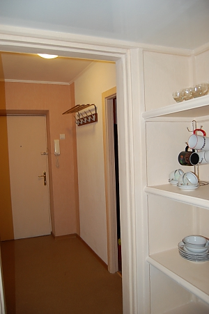 Apartment near to Druzhby Narodiv station, Studio, 004