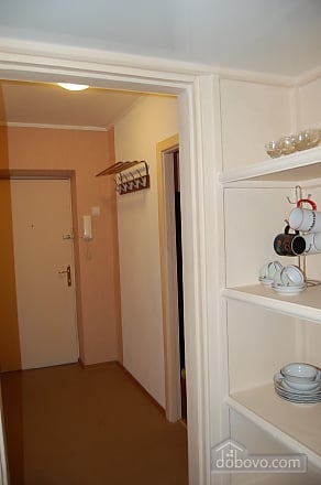 Apartment near to Druzhby Narodiv station, Studio (39313), 004