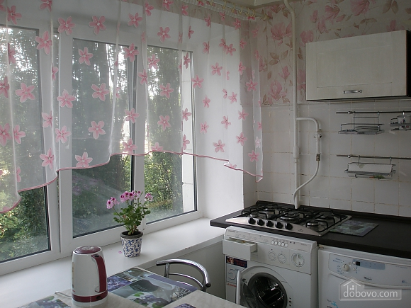 Apartment in Kiev, One Bedroom (21717), 001