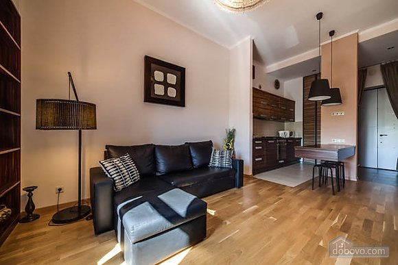 Stylish apartment in the center of Lviv, Studio (79954), 003