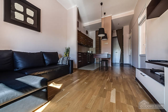Stylish apartment in the center of Lviv, Studio (79954), 010