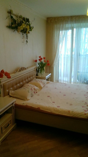 Cozy apartment on Podil, One Bedroom, 002