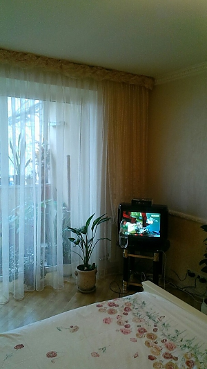 Cozy apartment on Podil, One Bedroom, 003