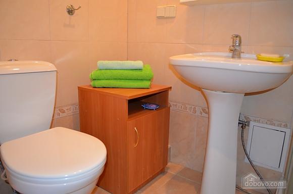 Apartment in the city center, Un chambre (82711), 008