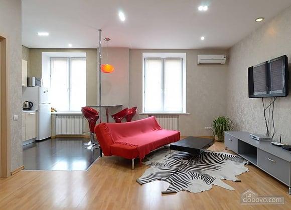 Апартаменты в центре города, 2х-комнатная (13910), 001