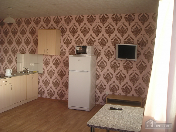 Studio-apartment, Monolocale (95758), 006