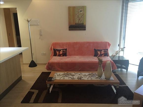 Покращені апартаменти з видом на сад з однією спальнею, 2-кімнатна (43961), 019