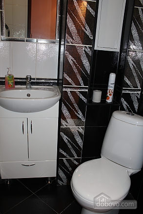 Buisness class apartment, Zweizimmerwohnung (31255), 004
