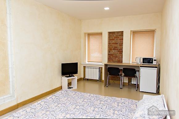 Apartment near Ploscha Vostannya metro station, Studio (80481), 001