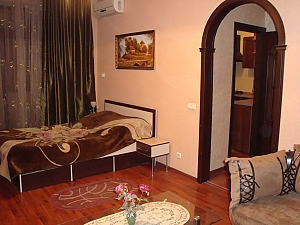 Luxury apartment in the center near the department store Ukraina, Studio, 001