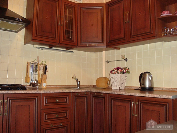 Luxury apartment in the center near the department store Ukraina, Studio (64611), 004