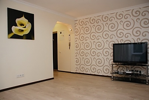 Excellent apartment in Pechersk, Un chambre, 002