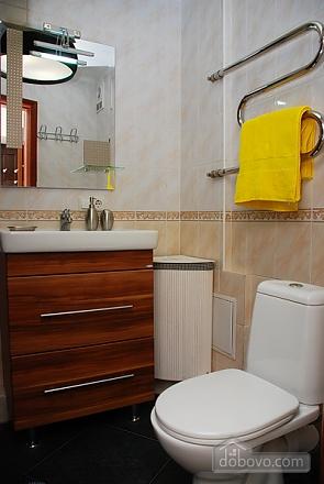 Excellent apartment in Pechersk, Un chambre (12568), 006