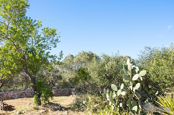 Estate near Gallipoli, One Bedroom (48878), 026