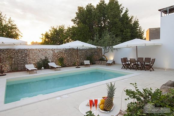 Средневековая студия с бассейном, 1-комнатная (79856), 021