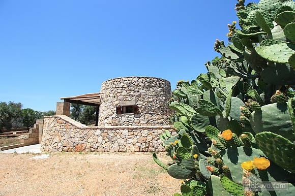 Trullo surrounded by olive trees, One Bedroom (47383), 007