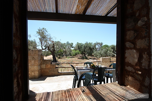 Trullo surrounded by olive trees, One Bedroom (47383), 017