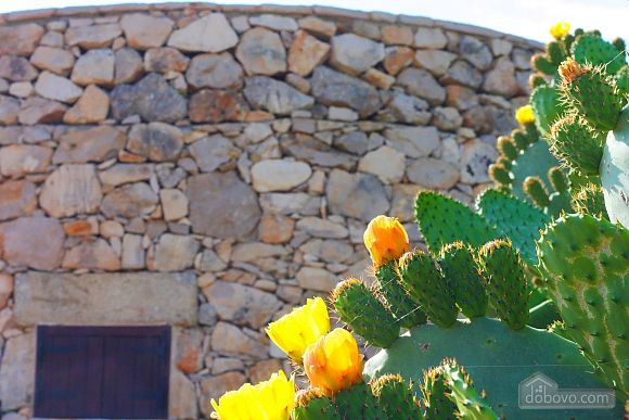 Trullo surrounded by olive trees, One Bedroom (47383), 038