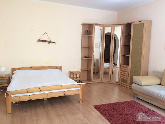 Eco-studio on Khreshchatyk, Monolocale (82411), 001