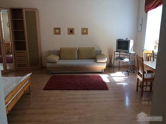 Eco-studio on Khreshchatyk, Monolocale (82411), 002