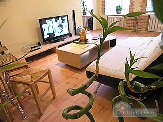 Apartment Bamboo (Khreshchatyk), Un chambre (37444), 004