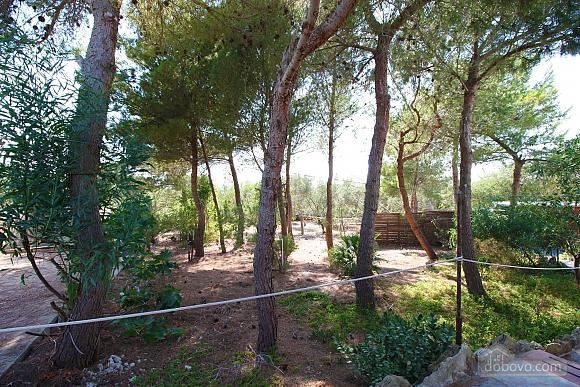 Villa with large garden, Studio (51603), 004