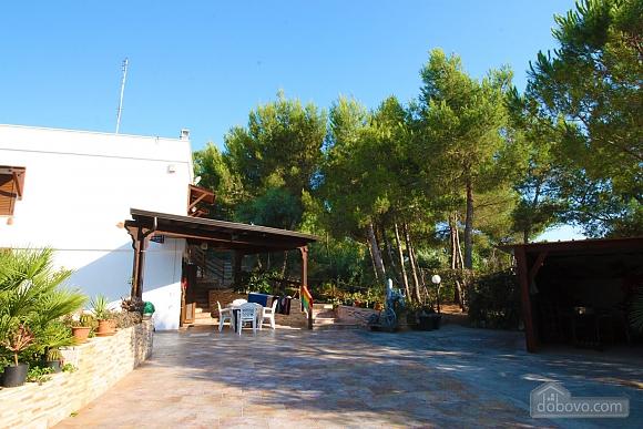Villa with large garden, Studio (51603), 005
