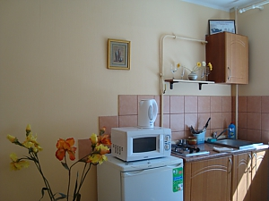 Apartment in center of Dnipropetrovsk, Studio, 003