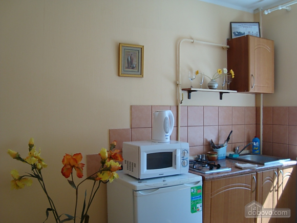 Apartment in center of Dnipropetrovsk, Studio (40617), 003