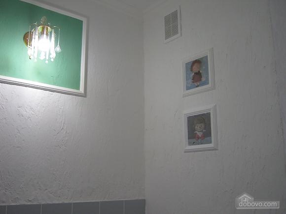 Квартира в центрі, 1-кімнатна (95872), 018