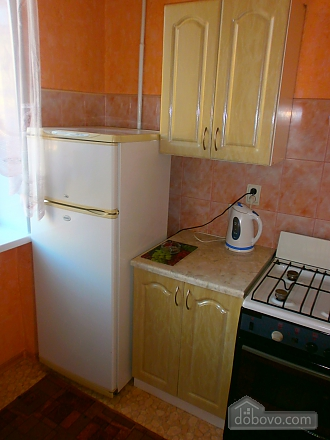 Apartment in the center of Kramatorsk, Studio (58780), 003
