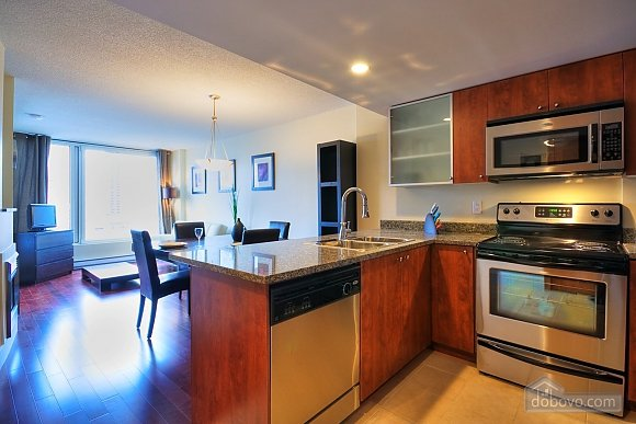 Condo in the Old Montreal, One Bedroom (84768), 006