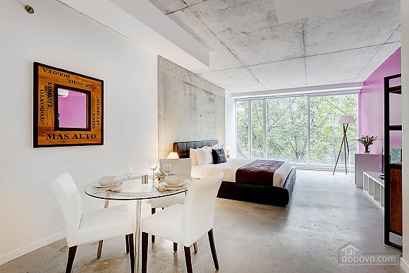 Right in the heart of Montreal, Studio (24398), 006