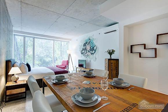 Студия в центре Монреаля, 1-комнатная (64828), 001