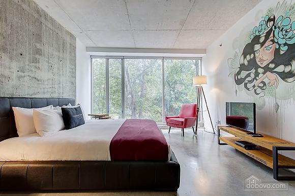 Студия в центре Монреаля, 1-комнатная (64828), 004