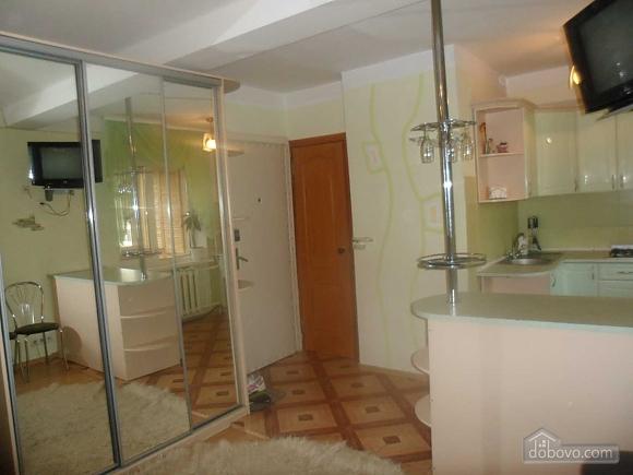 Квартира на Оболони, 1-комнатная (42279), 002