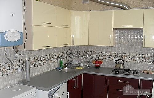 Apartment in Truskavets, Studio (72096), 002
