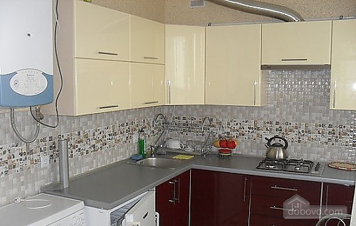 Apartment in Truskavets, Monolocale (72096), 003