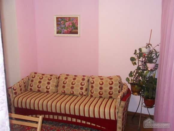 Apartment in Truskavets, Studio (58294), 005